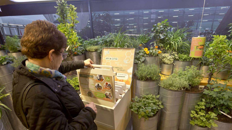 Expo Ger Ausst Garten 001 A