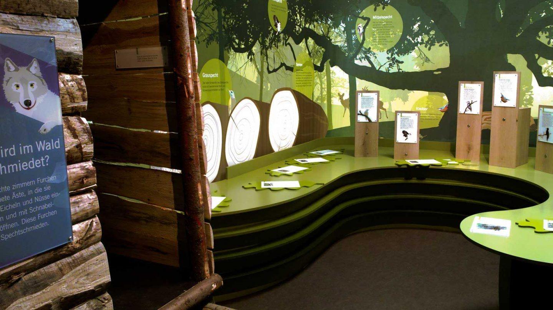 Milla Ausstellung Besucherzentrum Ehmetsklinge 07