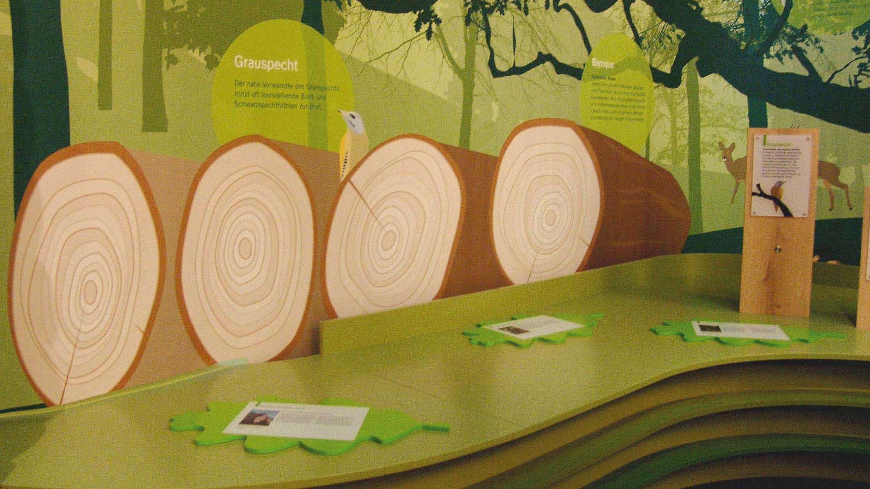 Milla Expo balancity Kugel neu 06