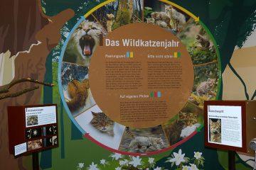 Milla Bosch Pavillon Expo 01